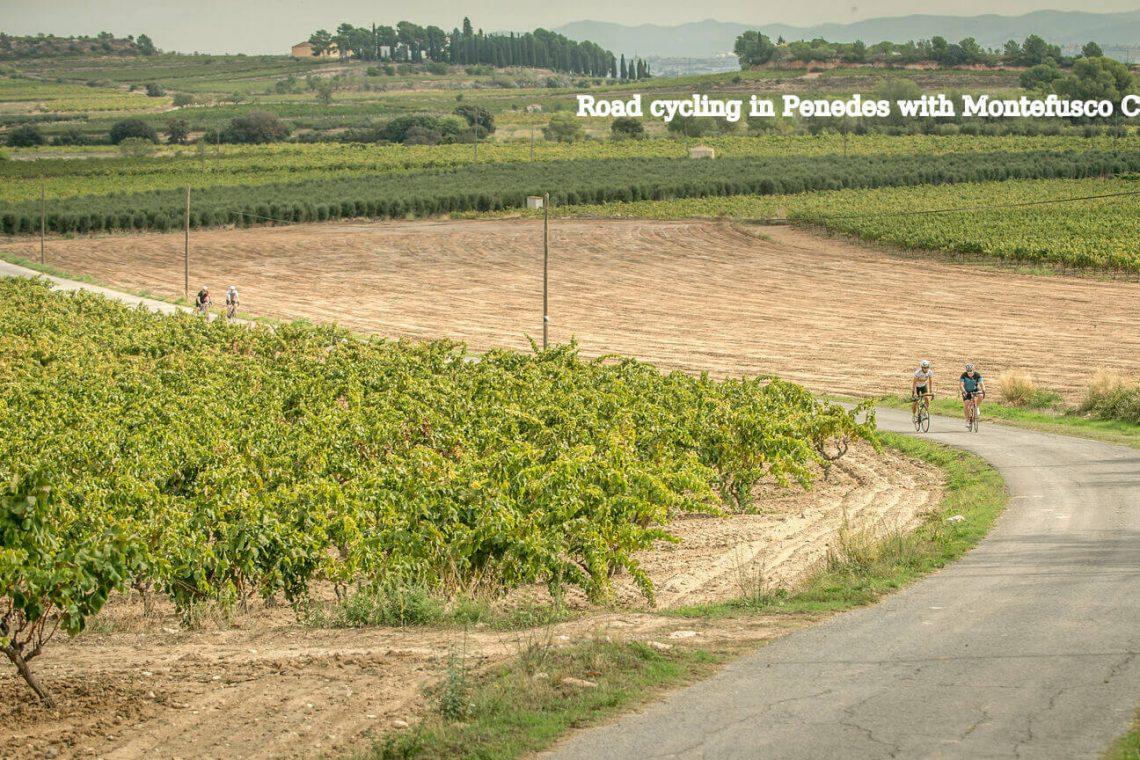 Vineyards and Wineries Penedes Roadbike