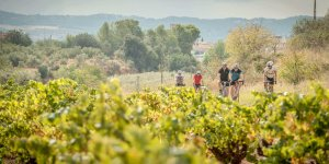 Selfguided Cycling Tour Barcelona - Montserrat - Penedes