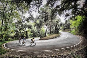 Roadcycling Barcelona