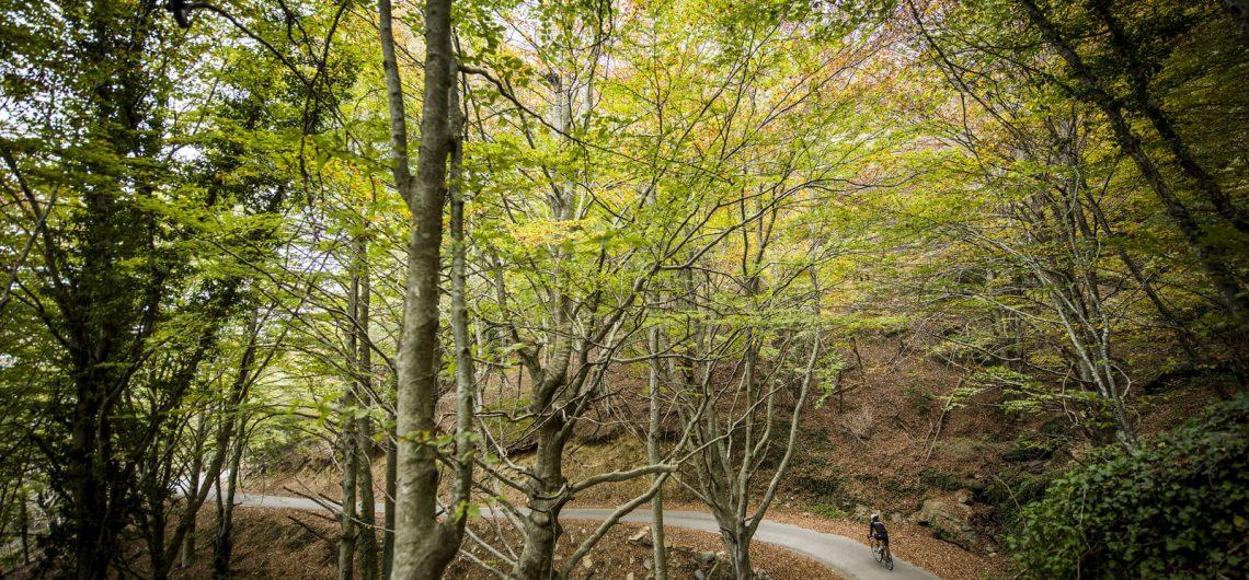 Cycling Montseny